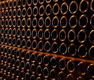 Pared llena de botellas de vino | Wines Suite