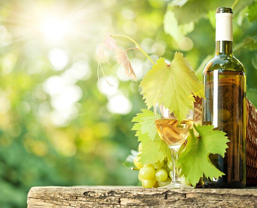 Botella de vino blanco   Wines Suite